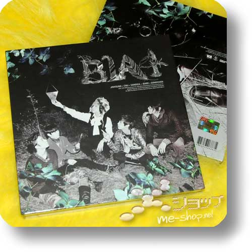 B1A4 - IN THE WIND (lim.Book-Edition) ORIG.KOREAPRESSUNG!-0