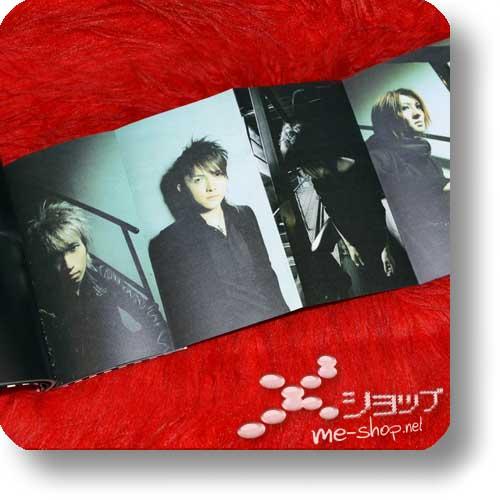 PIERROT - 2005 Tour TEMPORARY DECISION - Original Tour Pamphlet (Re!cycle)-16459