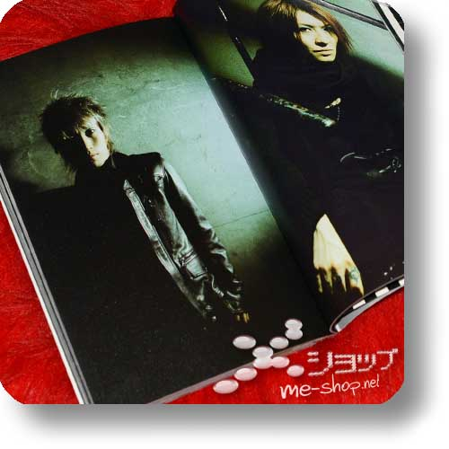 PIERROT - 2005 Tour TEMPORARY DECISION - Original Tour Pamphlet (Re!cycle)-16460