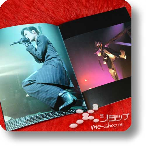 PIERROT - THE EVENING OF UNDERMINING FINAL 2005.01.03/04 Original Tour Pamphlet (Re!cycle)-16437