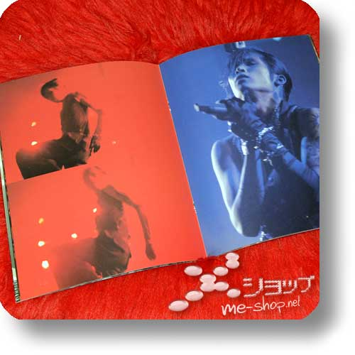 PIERROT - THE EVENING OF UNDERMINING FINAL 2005.01.03/04 Original Tour Pamphlet (Re!cycle)-16435