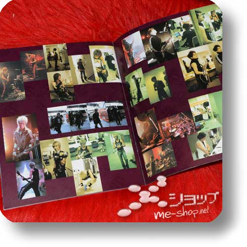 PIERROT - THE EVENING OF UNDERMINING FINAL 2005.01.03/04 Original Tour Pamphlet (Re!cycle)-16438