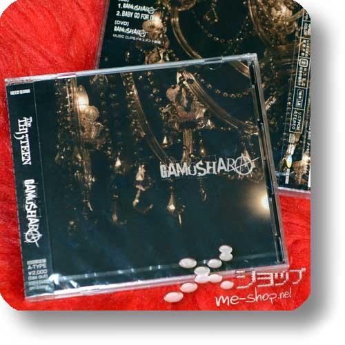 THE THIRTEEN - GAMUSHARA (LIM.CD+DVD A-Type) (TH13TEEN / Sadie)-0